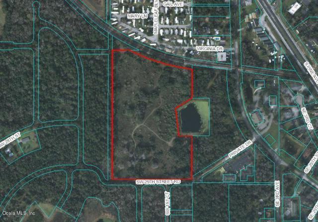 211 SW 29th Street Road, Ocala, FL 34471 (MLS #551512) :: Realty Executives Mid Florida