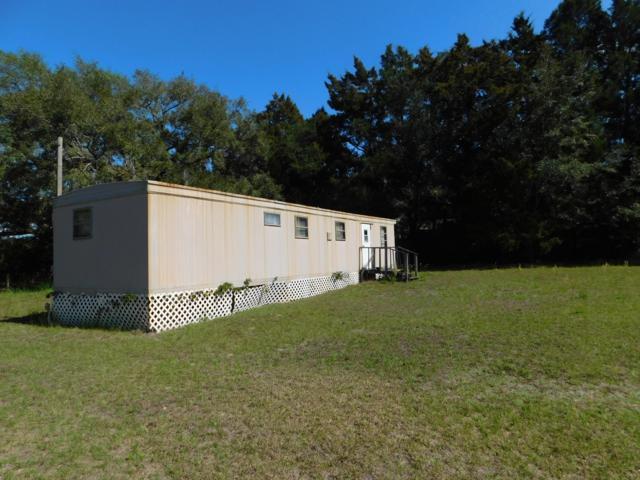 10560 SE 145th Street, Summerfield, FL 34491 (MLS #551545) :: Pepine Realty
