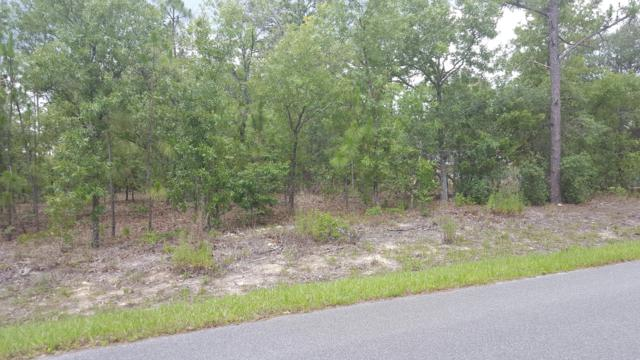 0 SW 137 Th Court, Dunnellon, FL 34432 (MLS #551585) :: Realty Executives Mid Florida