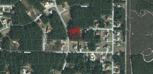 0 SW 41 Avenue, Ocala, FL 34476 (MLS #551642) :: Thomas Group Realty