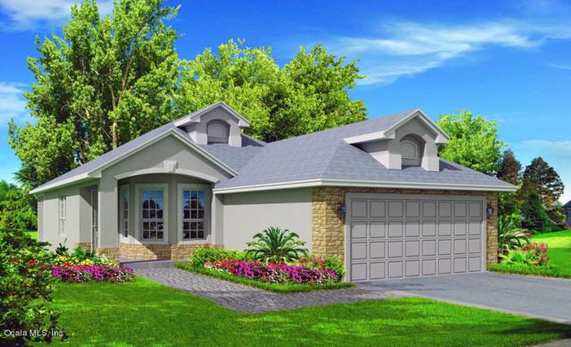 8101 Bridgeport Bay Circle, Mount Dora, FL 32757 (MLS #551696) :: Bosshardt Realty