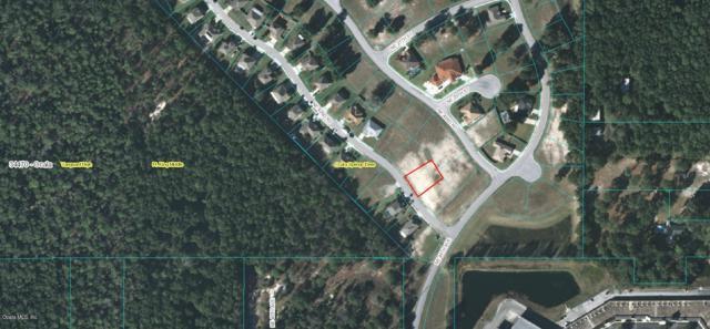 TBD NE 42nd Road, Ocala, FL 34470 (MLS #551704) :: Bosshardt Realty