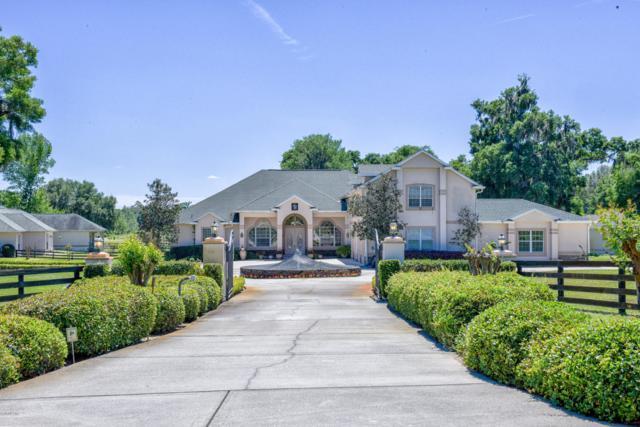 900 SE 87th Street, Ocala, FL 34480 (MLS #551733) :: Realty Executives Mid Florida