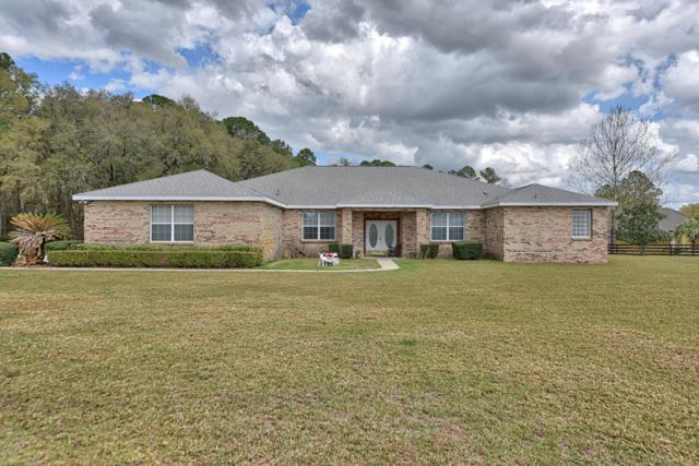 7385 NW 83rd Court Road, Ocala, FL 34482 (MLS #551760) :: Pepine Realty