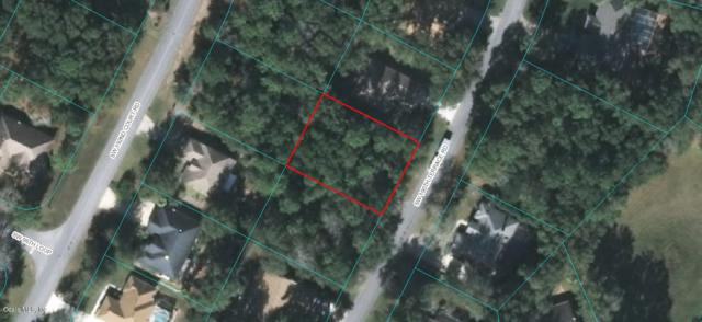 TBD SW 190TH TER Road, Dunnellon, FL 34432 (MLS #551843) :: Thomas Group Realty