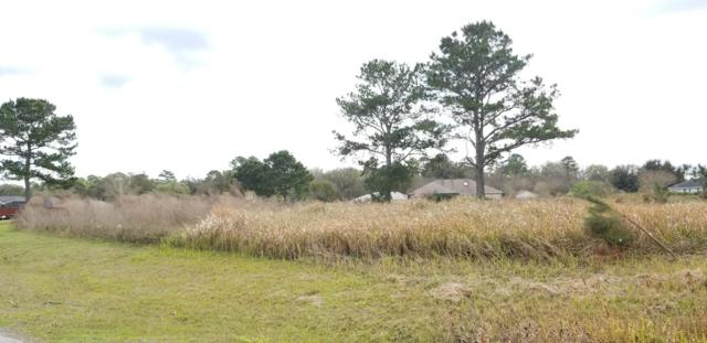 TBD Bahia Trace Circle, Ocala, FL 34472 (MLS #551878) :: Realty Executives Mid Florida