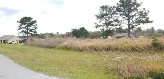 TBD Bahia Trace Circle, Ocala, FL 34472 (MLS #551881) :: Realty Executives Mid Florida