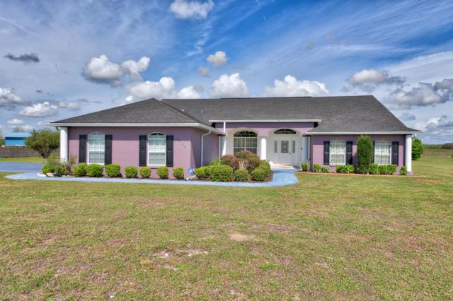 6735 SE 85th Lane, Ocala, FL 34472 (MLS #551944) :: Thomas Group Realty
