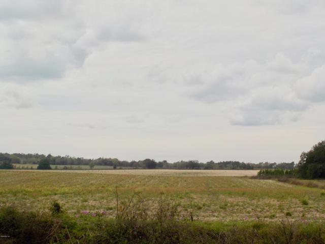 TBD SW 210 Avenue, Dunnellon, FL 34431 (MLS #552061) :: Thomas Group Realty