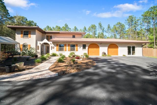 18611 SW 60th Street, Dunnellon, FL 34432 (MLS #552376) :: Bosshardt Realty