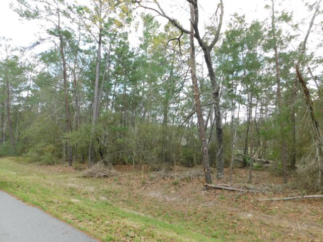 Lot 251 N SW 114th Place, Ocala, FL 34476 (MLS #552673) :: Thomas Group Realty