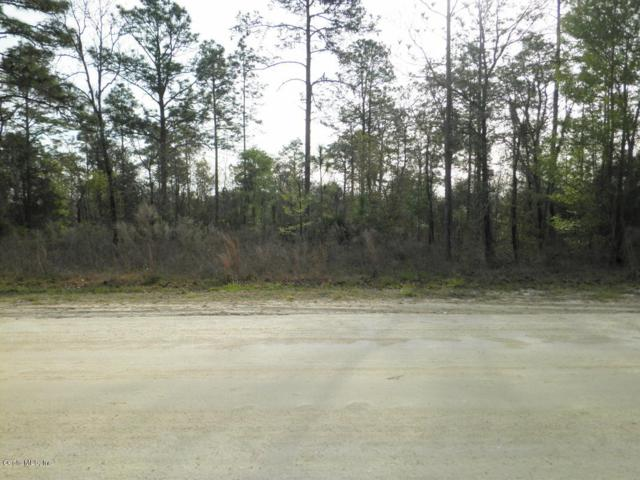 LOT 5 Sw 165Th Avenue Rd, Ocala, FL 34481 (MLS #552696) :: Bosshardt Realty