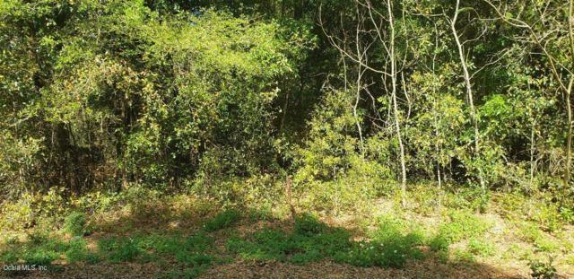 0 Dogwood Trl, Ocala, FL 34472 (MLS #552734) :: Thomas Group Realty