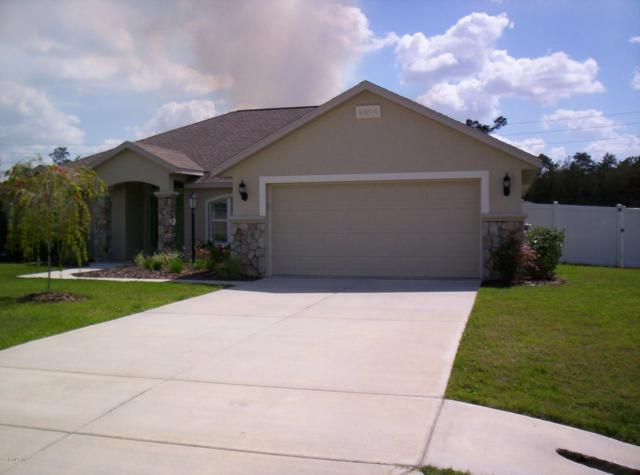 9914 SW 55 Avenue Road, Ocala, FL 34476 (MLS #552786) :: Realty Executives Mid Florida