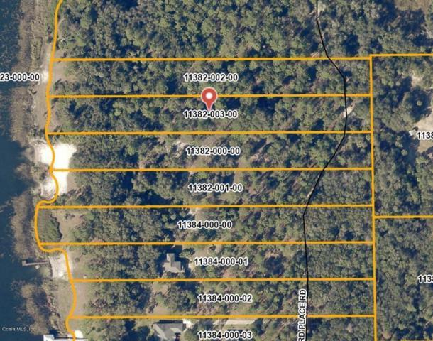 000 NE 133rd Street, Salt Springs, FL 32134 (MLS #552796) :: Thomas Group Realty