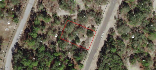 3078 W Marie Drive, Citrus Springs, FL 34433 (MLS #552851) :: Thomas Group Realty