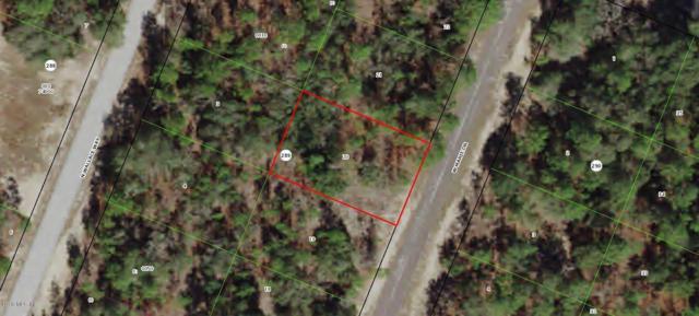 3025 W Marie Drive, Citrus Springs, FL 34433 (MLS #552852) :: Thomas Group Realty