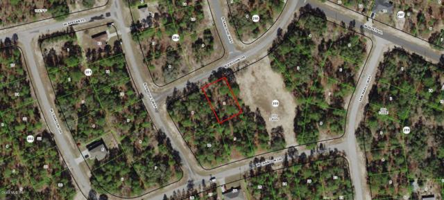 9585 N Vaughn Drive, Citrus Springs, FL 34433 (MLS #552856) :: Thomas Group Realty