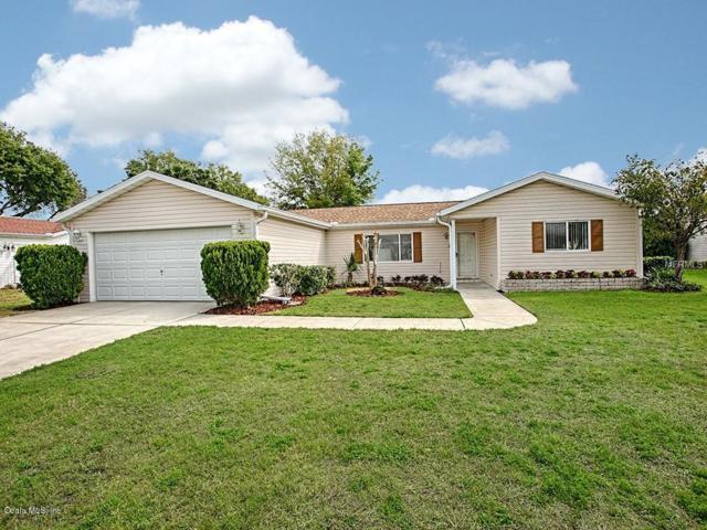 17521 SE 95th Circle, Summerfield, FL 34491 (MLS #552896) :: Bosshardt Realty