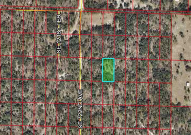 tbd SE 122nd Avenue, Morriston, FL 32668 (MLS #552958) :: Bosshardt Realty