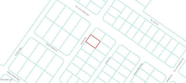 0 Guava Terrace, Ocklawaha, FL 32179 (MLS #552963) :: Bosshardt Realty