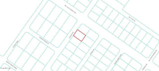 0 Guava Terrace, Ocklawaha, FL 32179 (MLS #552965) :: Bosshardt Realty