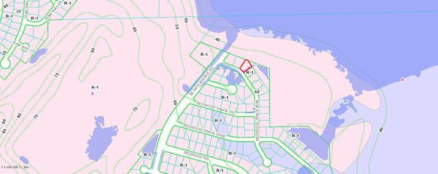 0 SE Redwood Track Run, Ocala, FL 34472 (MLS #552980) :: Realty Executives Mid Florida