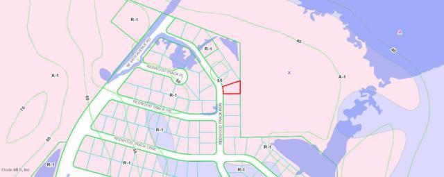 TBD SE Redwood Trk Run, Ocala, FL 34472 (MLS #552982) :: Realty Executives Mid Florida