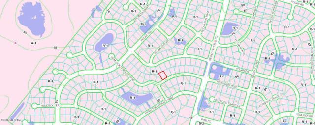 TBD Redwood Trace, Ocala, FL 34472 (MLS #552984) :: Realty Executives Mid Florida