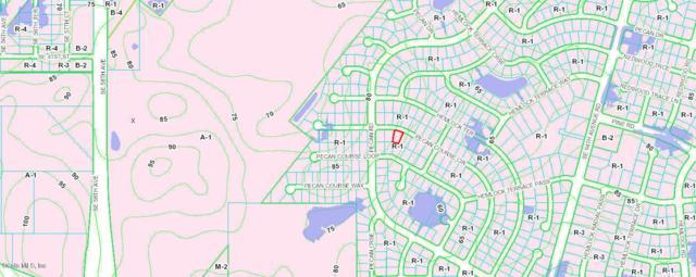 TBD SE Pecan Crse Circle, Ocala, FL 34472 (MLS #552991) :: Realty Executives Mid Florida