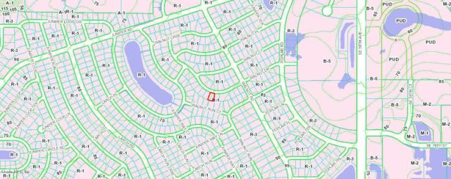 TBD Walnut Drive, Ocala, FL 34480 (MLS #553013) :: Realty Executives Mid Florida