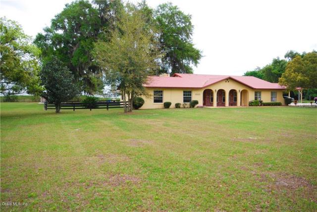 10233 County Road 117, Oxford, FL 34484 (MLS #553024) :: Realty Executives Mid Florida