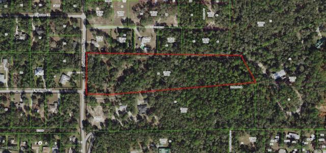 7357 N Whippoorwill Terrace, Hernando, FL 34442 (MLS #553047) :: Bosshardt Realty