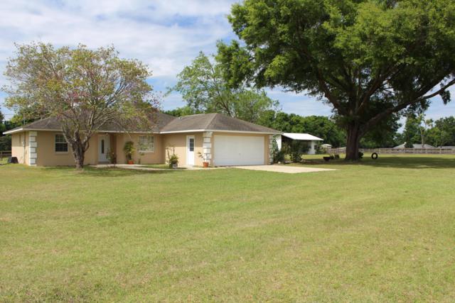 13830 N Magnolia Avenue, Citra, FL 32113 (MLS #553054) :: Pepine Realty