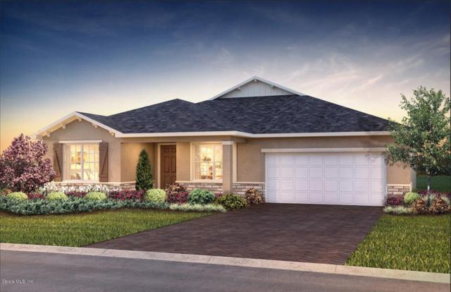 10097 SW 89th Loop, Ocala, FL 34481 (MLS #553081) :: Bosshardt Realty