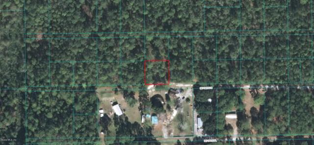 14099 NE 156th Lane, Fort Mccoy, FL 32132 (MLS #553096) :: Bosshardt Realty