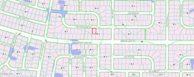 TBD SW 130 Lane Road, Ocala, FL 34473 (MLS #553127) :: Realty Executives Mid Florida