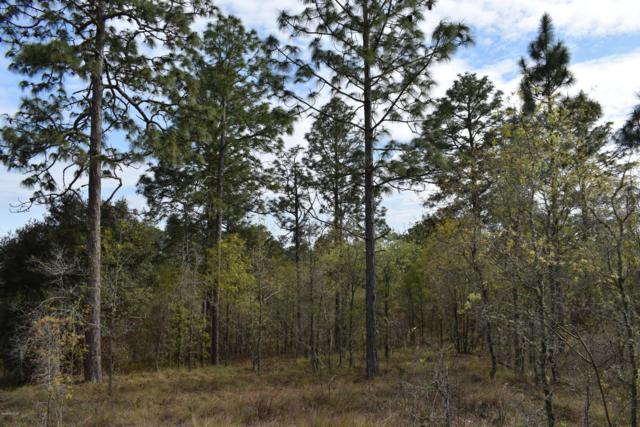 TBD SE 68th Lane, Morriston, FL 32668 (MLS #553135) :: Realty Executives Mid Florida