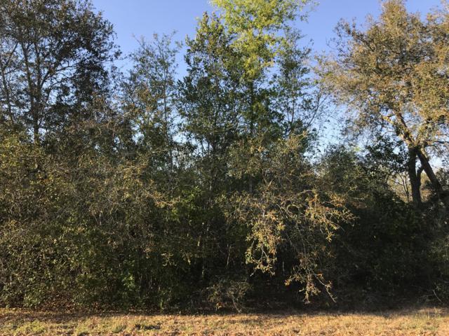 0 Oak Circle Way, Ocala, FL 34472 (MLS #553157) :: Thomas Group Realty