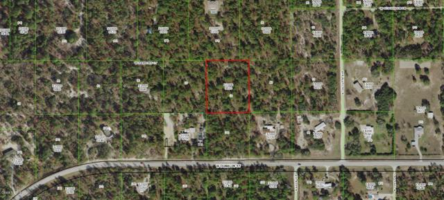 6568 W Hawkings Court, Dunnellon, FL 34433 (MLS #553172) :: Realty Executives Mid Florida