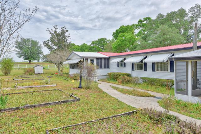 3980 SE 150th Street, Summerfield, FL 34491 (MLS #553344) :: Realty Executives Mid Florida