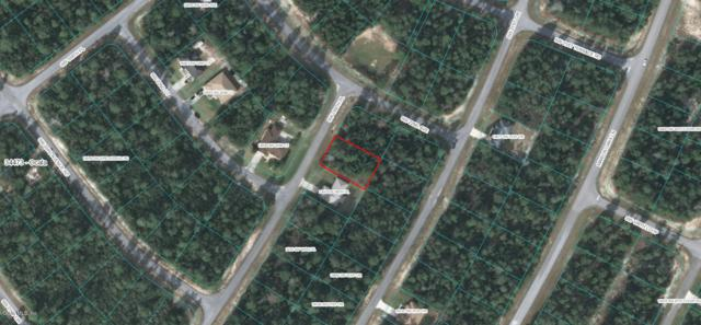 TBD SW 169th Place, Ocala, FL 34473 (MLS #553374) :: Thomas Group Realty
