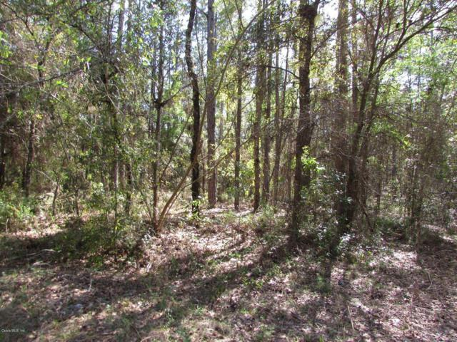 LOT 19 SW 39 Street, Dunnellon, FL 34432 (MLS #553537) :: Realty Executives Mid Florida
