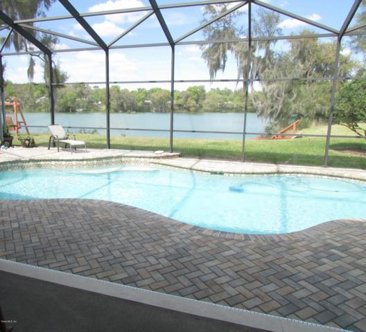 11862 Blue Heron Court, Dunnellon, FL 34432 (MLS #553796) :: Bosshardt Realty