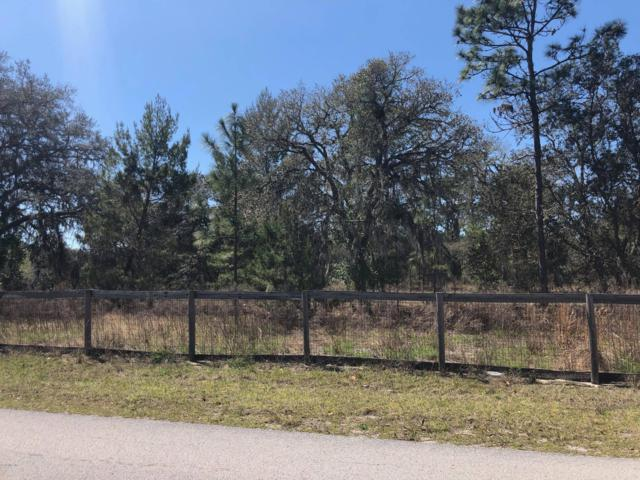 TBD SW 178th Terrace, Dunnellon, FL 34432 (MLS #553920) :: Realty Executives Mid Florida