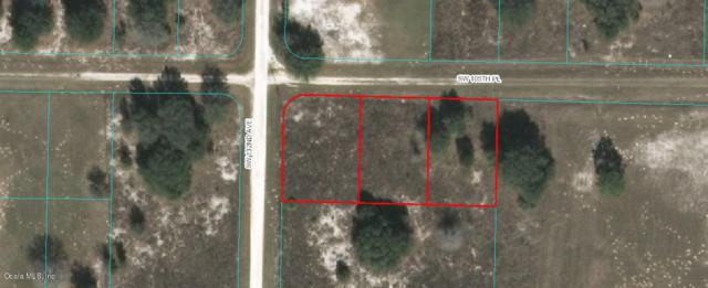 TBD SW 105th Place, Dunnellon, FL 34432 (MLS #554139) :: Realty Executives Mid Florida