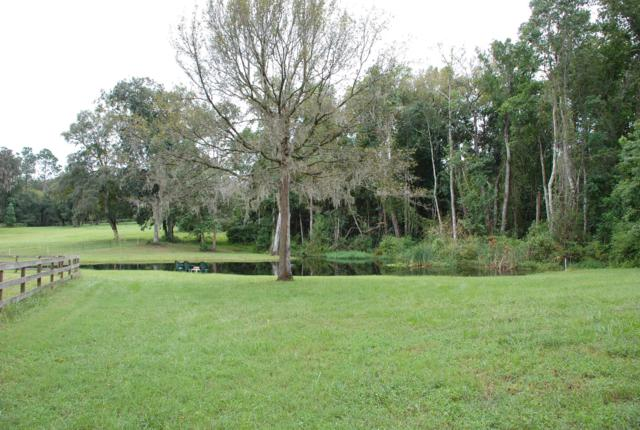 21357 NW 106th Court Road, Micanopy, FL 32667 (MLS #554222) :: Bosshardt Realty