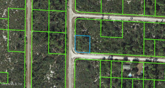 3461 Cliff Swallow Street, Lake Placid, FL 33852 (MLS #554239) :: Thomas Group Realty