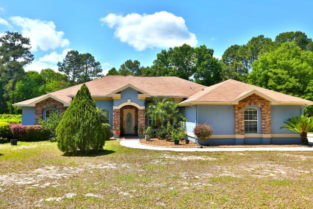 356 SE 125th Place, Ocala, FL 34480 (MLS #554379) :: Bosshardt Realty