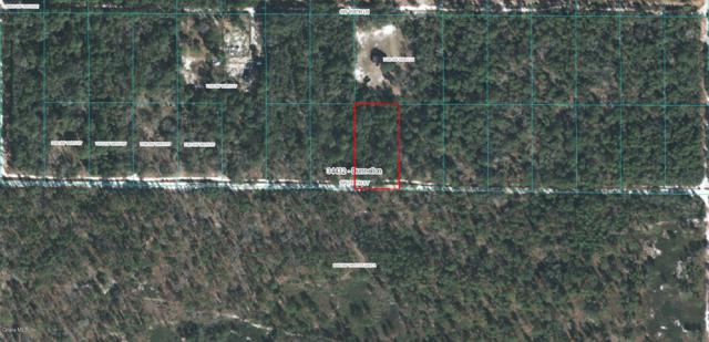 TBD SW 160th Street, Dunnellon, FL 34432 (MLS #554380) :: Pepine Realty